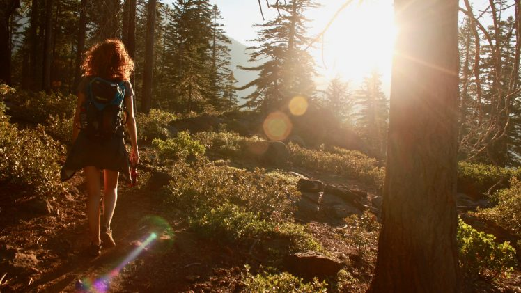 4 Most Favourite Hiking Trails for Beginners to Pros in Lake Tahoe